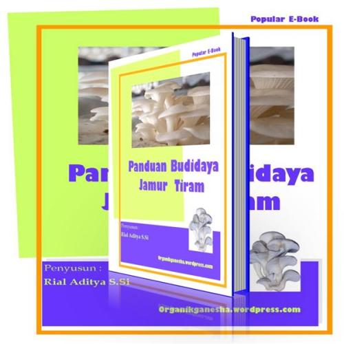 POPULAR E-BOOK